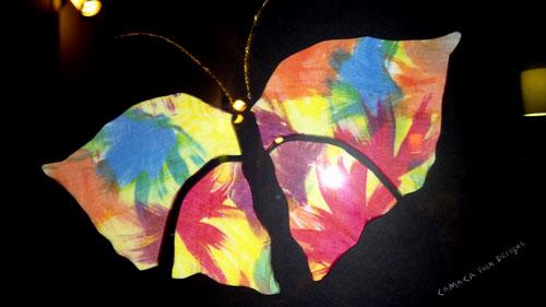 CAMACA's Butterfly